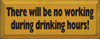 There will Be No Working During Drinking Hours Wood Sign