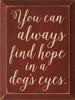 Wood Sign - You Can Always Find Hope In A Dog's Eyes.