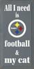 CUSTOM All I Need Is Football And My Cat 9x18