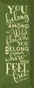You Belong Among The Wildflowers. You Belong...Wooden Sign