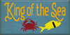 18x36 Williamsburg Blue board with Tangerine, Sunflower, Black, and Red design  King Of The Sea