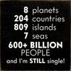 8 planets 204 countries 809 islands 7 seas 600+ billion people and I'm STILL single! Wood Sign
