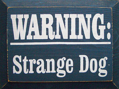 Wood Sign - Warning: Strange Dog