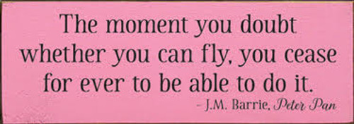 CUSTOM The Moment You Doubt Whether You Can Fly... 10x3.5