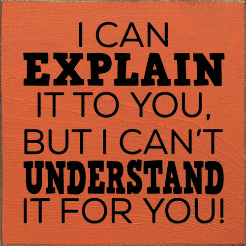 I can explain it to you, but I can't understand it for you!