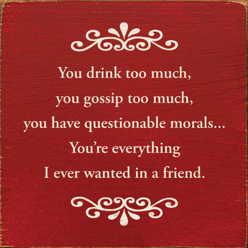 You drink too much, you gossip too much, you have questionable morals. . .You're everything I ever wanted in a friend.