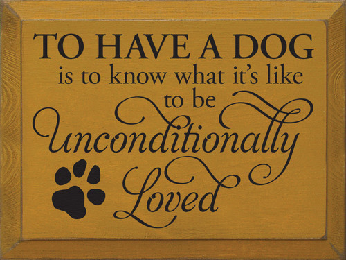 To have a dog is to know what it's like to be unconditionally loved