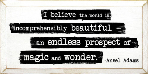 I believe the world is incomprehensibly beautiful - an endless prospect of magic and wonder. - Ansel Adams