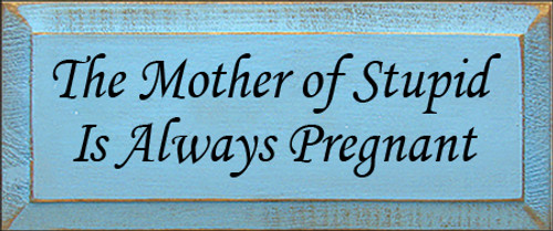 5x12 Light Blue board with Black text  The Mother Of Stupid Is Always Pregnant