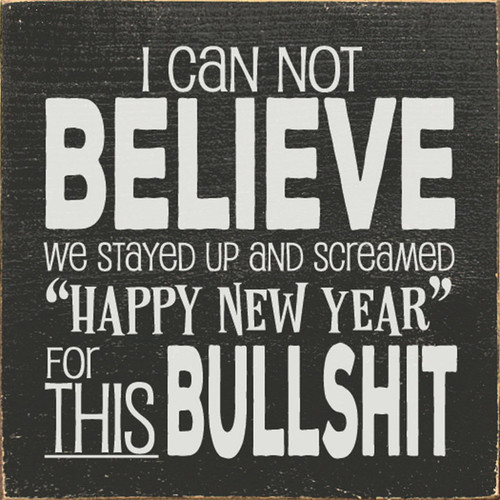 """I can not believe we stayed up and screamed """"Happy New Year"""" for this bullshit."""