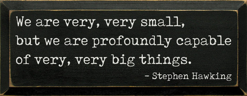 We are very, very small, be we are profoundly capable of very, very big things. - Stephen Hawking Wood Sign