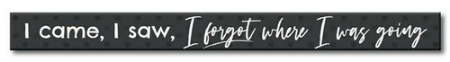 I Came, I Saw, I Forgot Where I Was Going - Skinny Wood Sign - 16in.