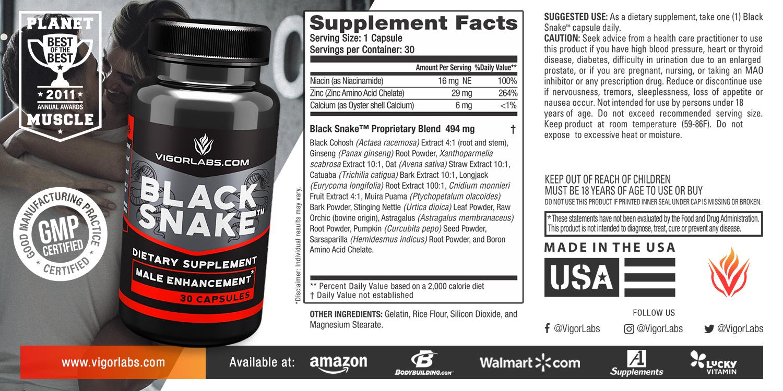 black-snake-2.jpg