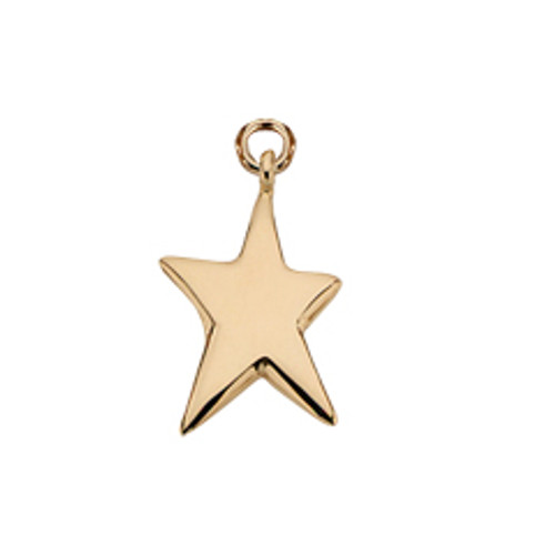 14kt Shining Star Charm for your Star of Life