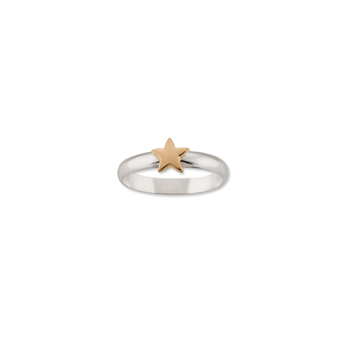Sterling Silver & 14kt Gold Talisman Star Ring