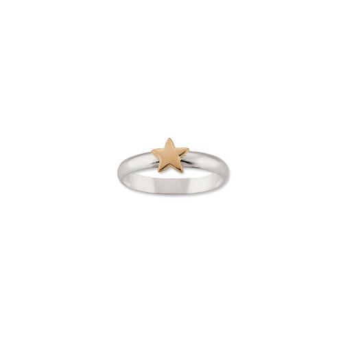 Sterling Silver & 14kt Gold Talisman Star Ring