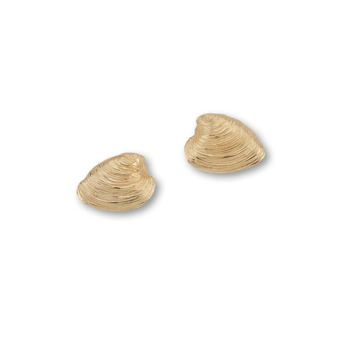 14kt Quahog Post Earrings amde of two half shells