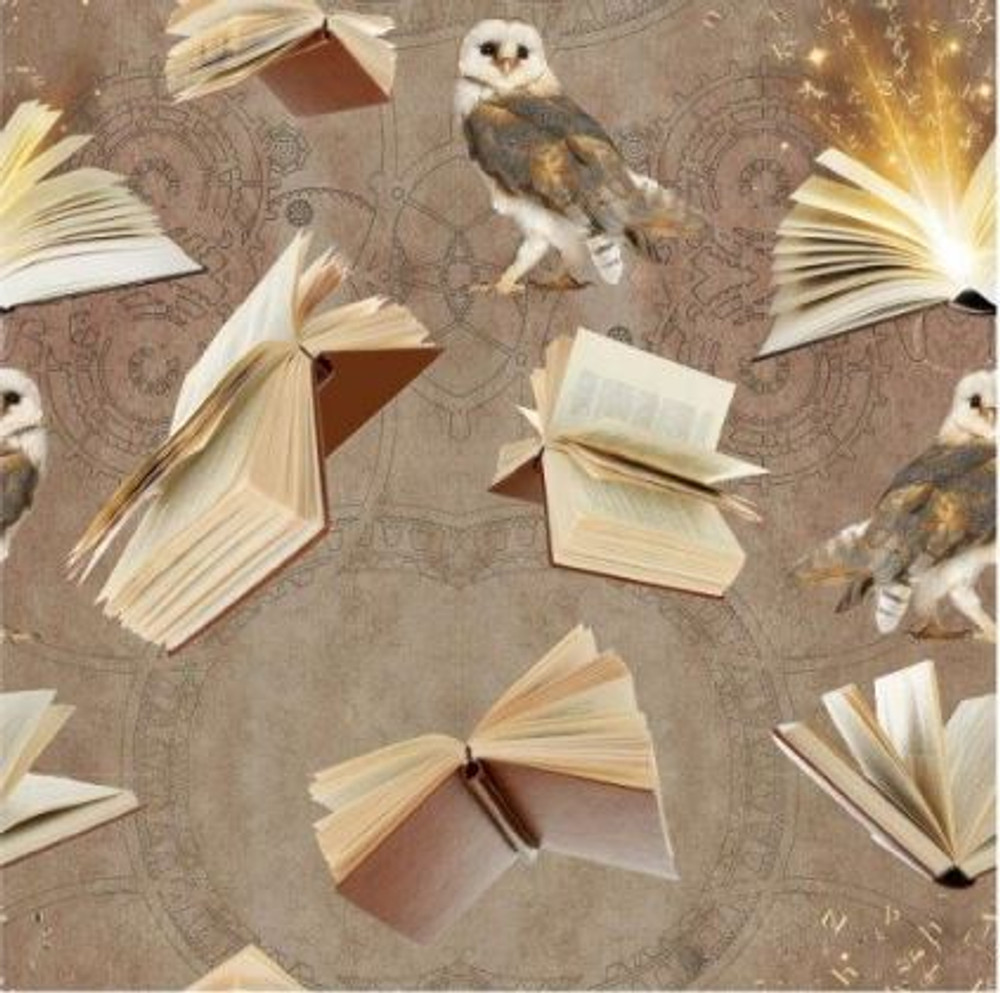 Books & Owls French Terry