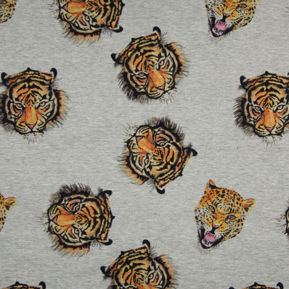 tigers on gray