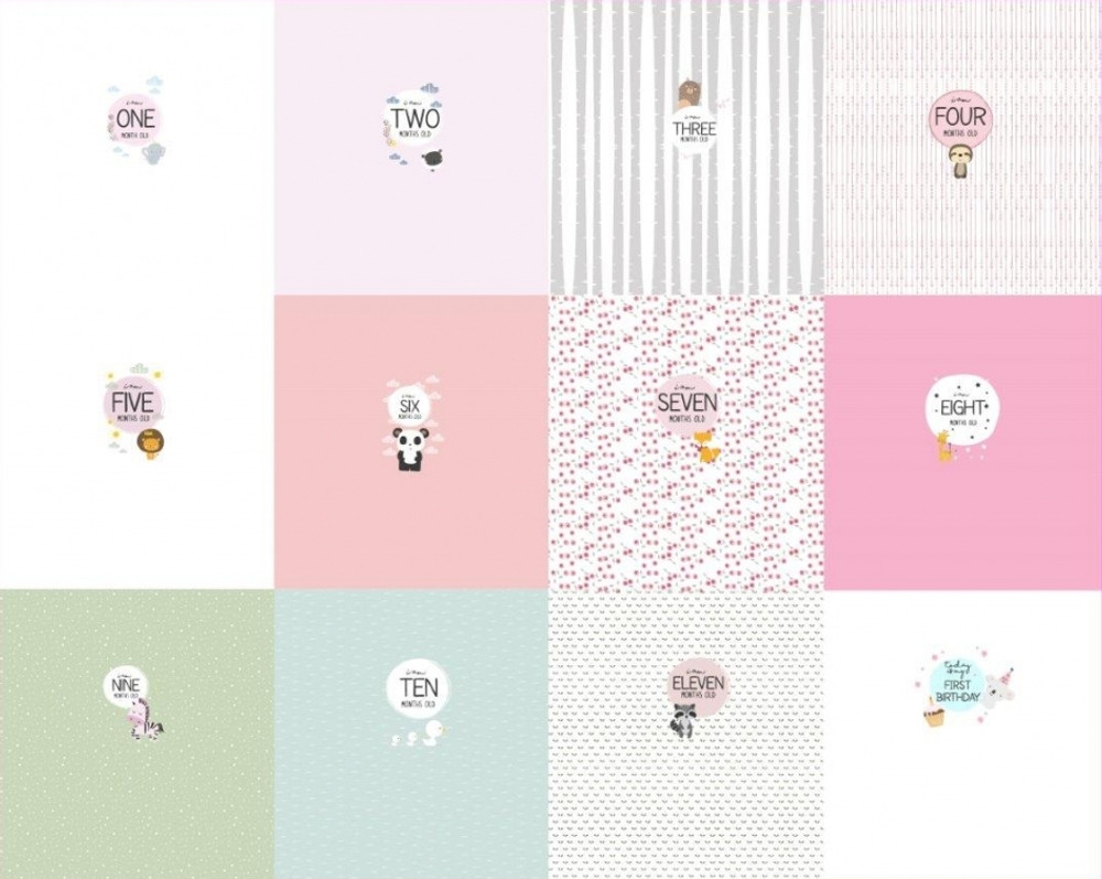 Monthly Milestone Girl Panel Set