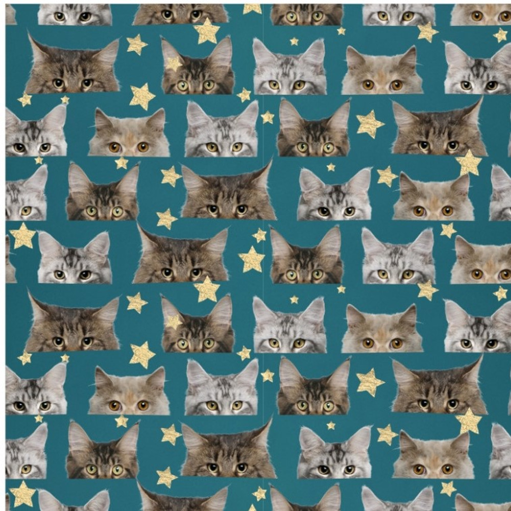 Kitties and Stars Cotton Lycra
