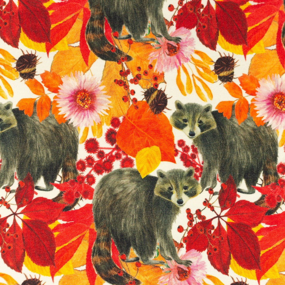 Racoons Cotton Lycra Knit