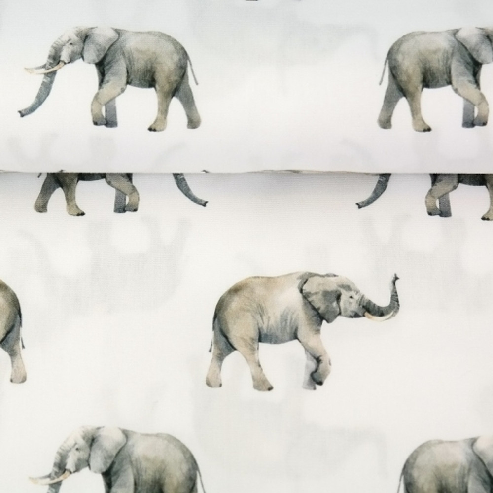 Elephant March Cotton Lycra