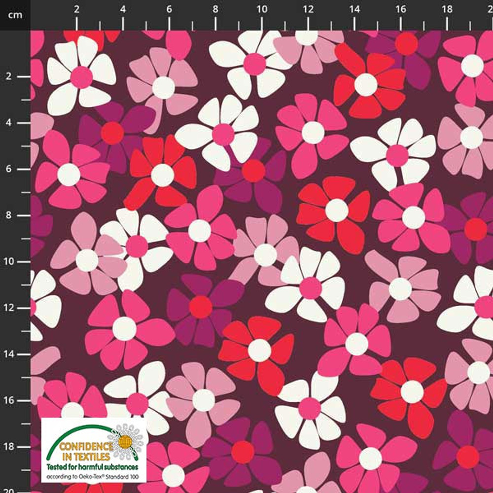 pink daisy floral