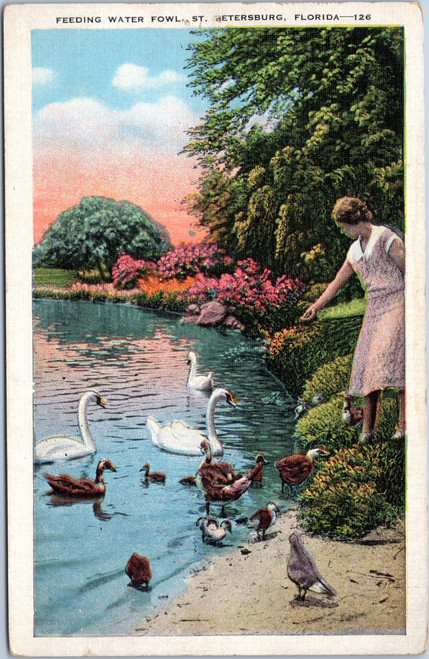 Woman in pink dress feeding swans and ducks