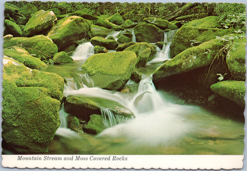 Great Smoky Mountains Stream and Moss covered rocks