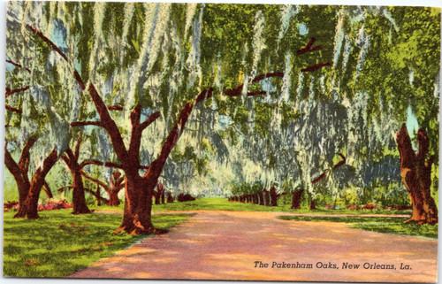 The Pakenham Oaks, New Orlean