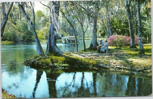 Scenic Silver River