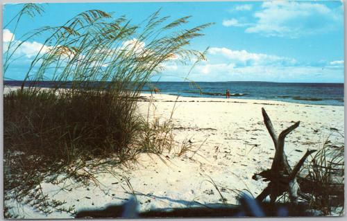 Scenic Florida beach