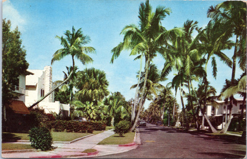Palm Beach Florida residential street