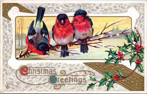 birds on branch with holly