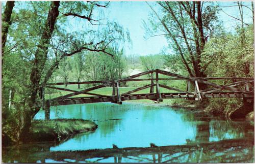 Morton Arboretum foot bridge