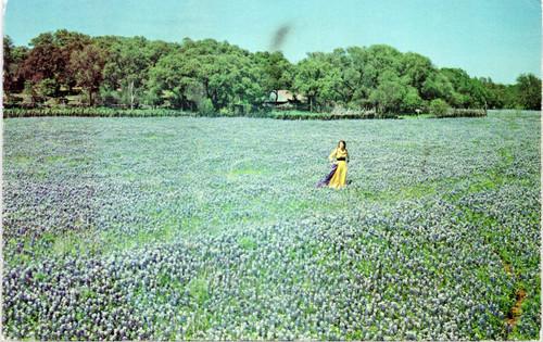 Woman in yellow dress in field of blue bonnets
