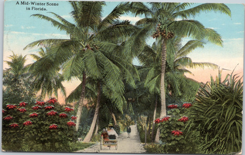 scenic florida