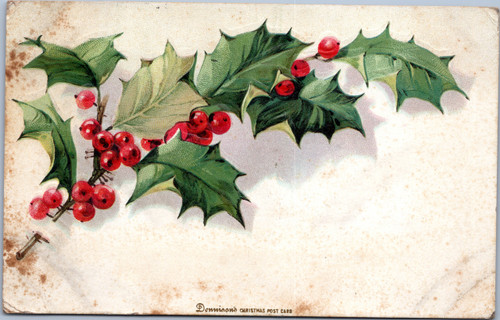 Donnison's Christmas holly