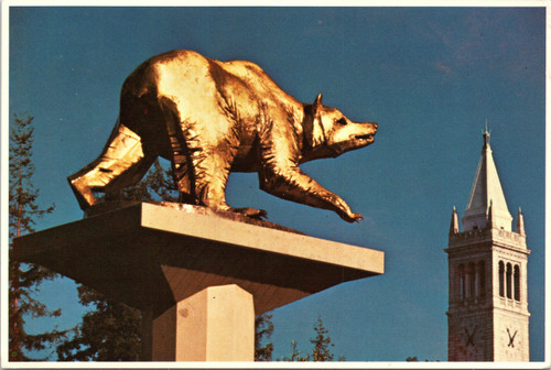 The Golden Bear Berkeley