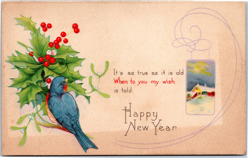 Happy New Year Blue Bird