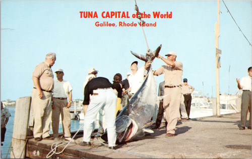 Fisherman with Giant Tuna in Galilee Rhode Island