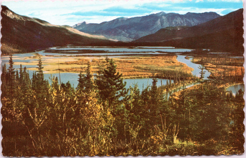 Moose Lake Headwaters of Toad River -