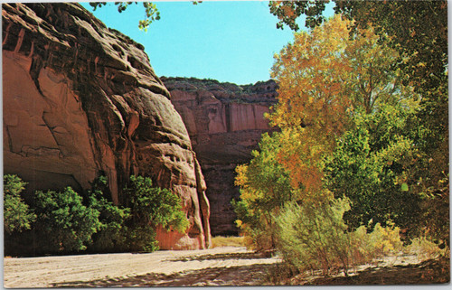 Canyon de Chelly -fall foliage