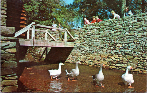 Old Sturbridge Village - Grist Mill - geese walking through