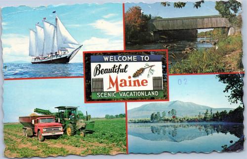 Maine scenic vacationland postcard