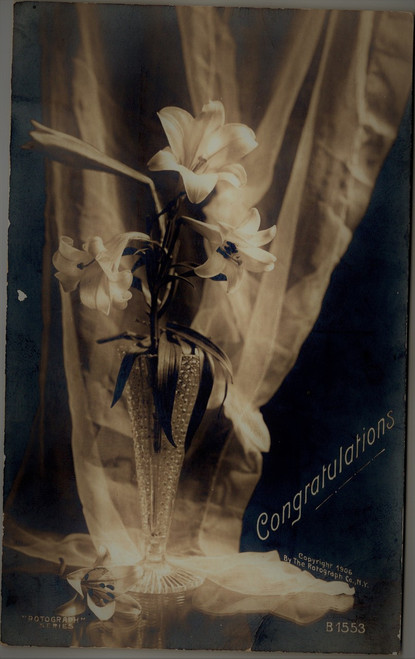 Congratulations - lillies in vase circa 1906