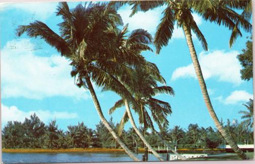 Whispering Palms Florida
