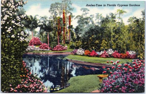 Cypress Gardens Azalea