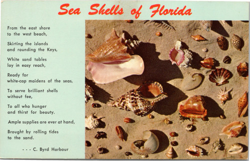 Sea Shells of Florida and C. Byrd Harbour poem